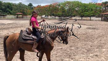 A girl riding Hammand's Arabians